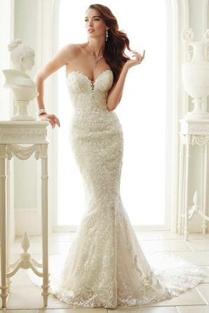 Sophia Tolli Y21671