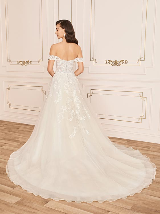 Sophia Tolli Y12019